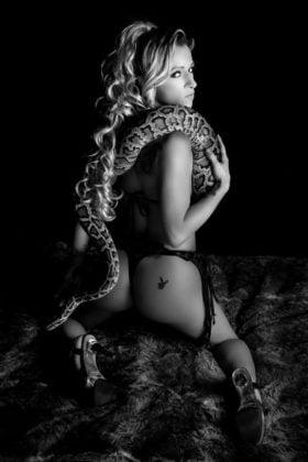 kelly snake